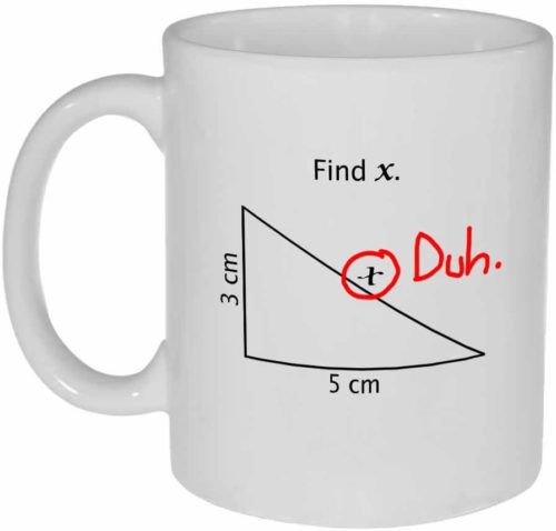 Find X Funny Math Coffee or Tea Mug