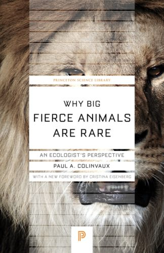 Why Big Fierce Animals Are Rare: An Ecologist's Perspective