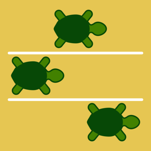 Turtle Time Trials