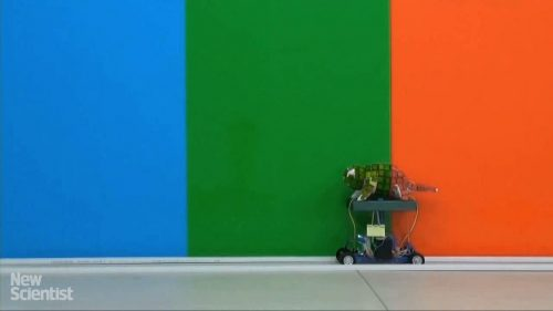 Chameleon Robot Changes Colour to Blend In | Video | Abakcus