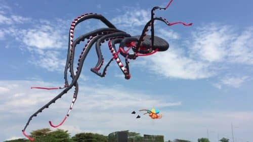 Giant Octopus Kite | Fascinating Video by Erich Chew | Abakcus