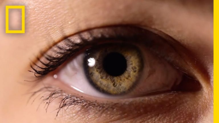 Eyes- The Windows to Your Health | Video | Abakcus