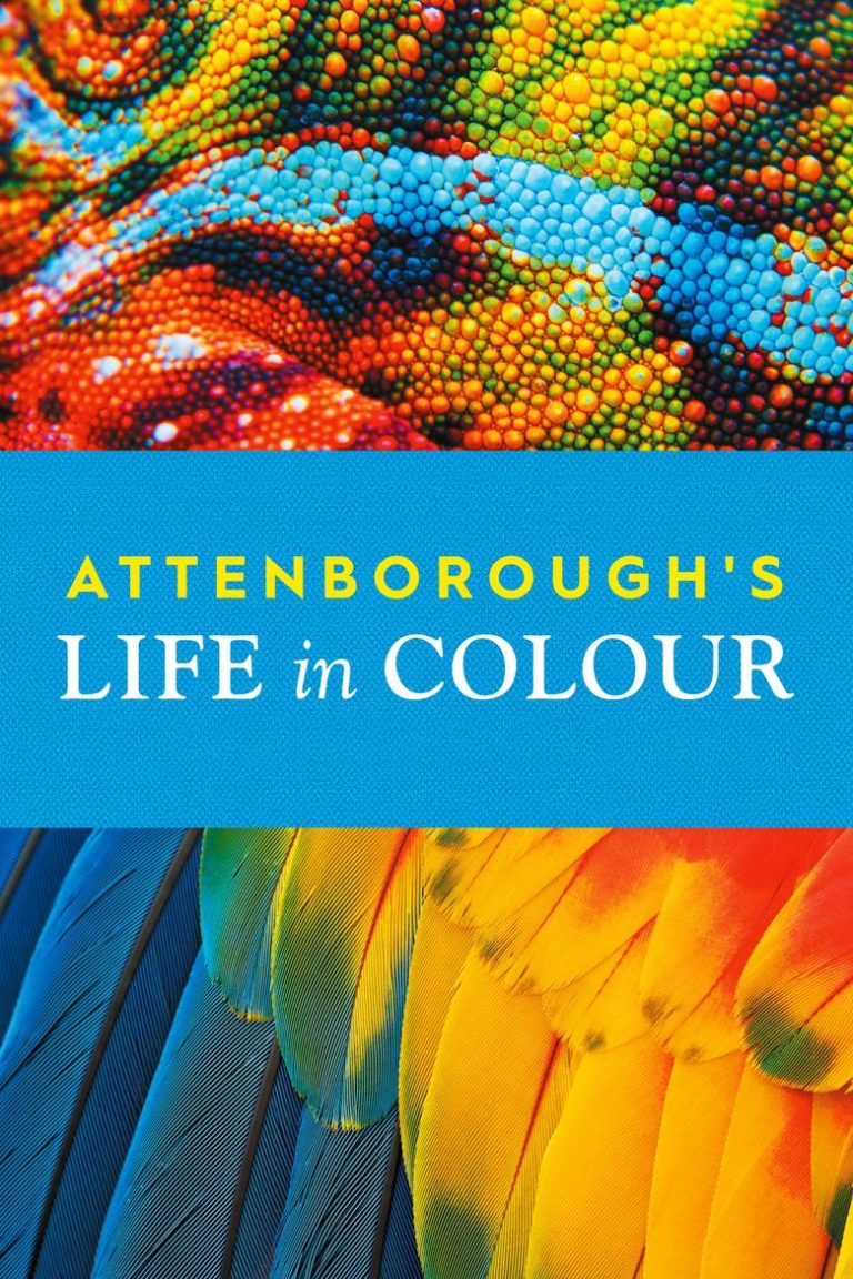 Life in Color with David Attenborough | Documentary | Abakcus
