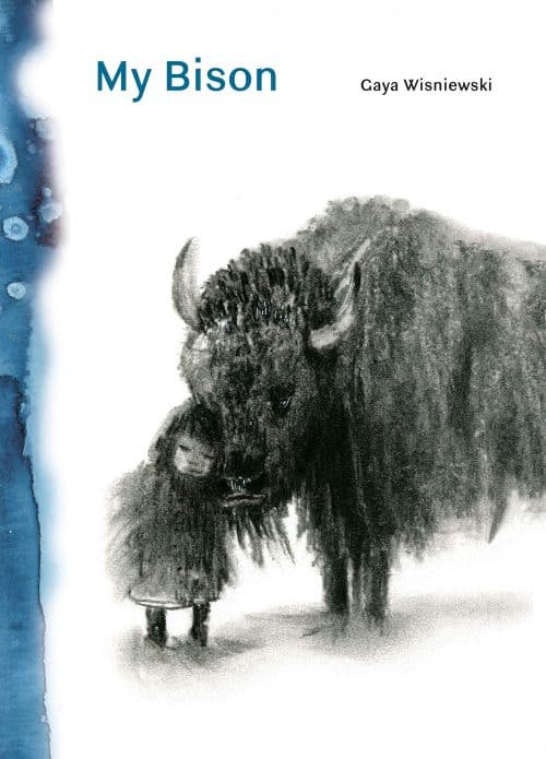 My Bison | Abakcus