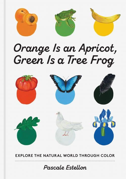 Orange Is an Apricot, Green Is a Tree Frog | Abakcus